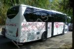 Аренда автобуса для детей на экскурсию
